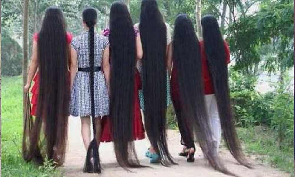 صورة اطول شعر في العالم , صور شعر طويل 2240