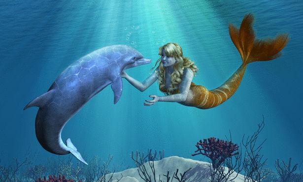 بالصور صور عروسه البحر , اجمل صور عروسه البحر 2245 10