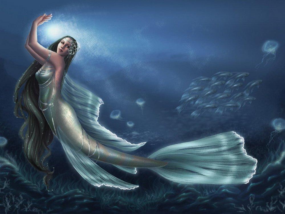 صور صور عروسه البحر , اجمل صور عروسه البحر