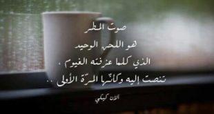شعر عن المطر , كلمات جميلة عن المطر