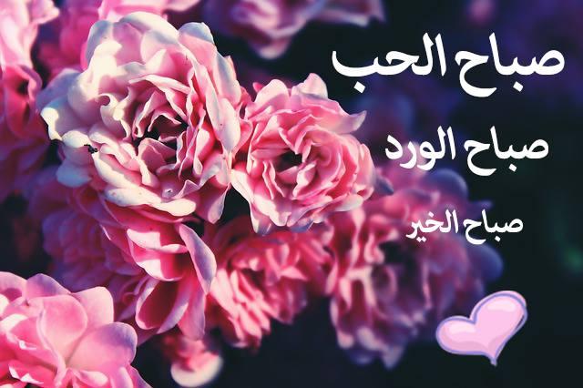 بالصور صباح الحب حبيبي , اجمل صباح لاجمل حبيب 2757 1