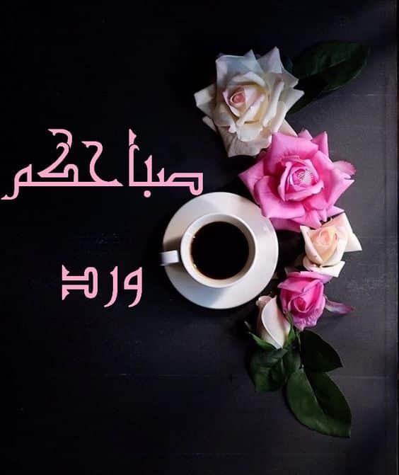 بالصور صباح الحب حبيبي , اجمل صباح لاجمل حبيب 2757 7