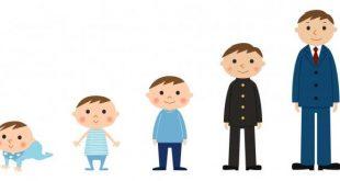 صوره تطور الطفل , مراحل تطور الاطفال