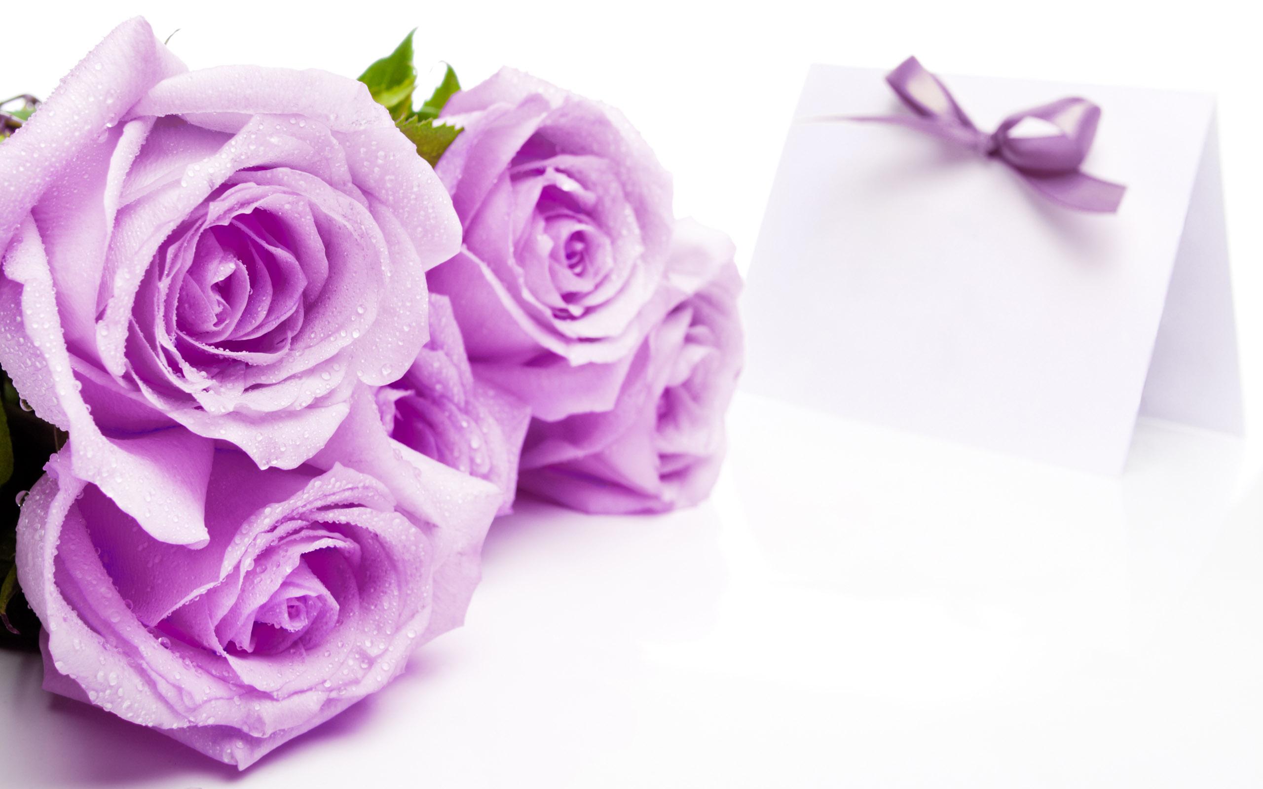 بالصور خلفيات زهور , خلفيات زهور للهواتف واجهزة الكمبيوتر 2903 12