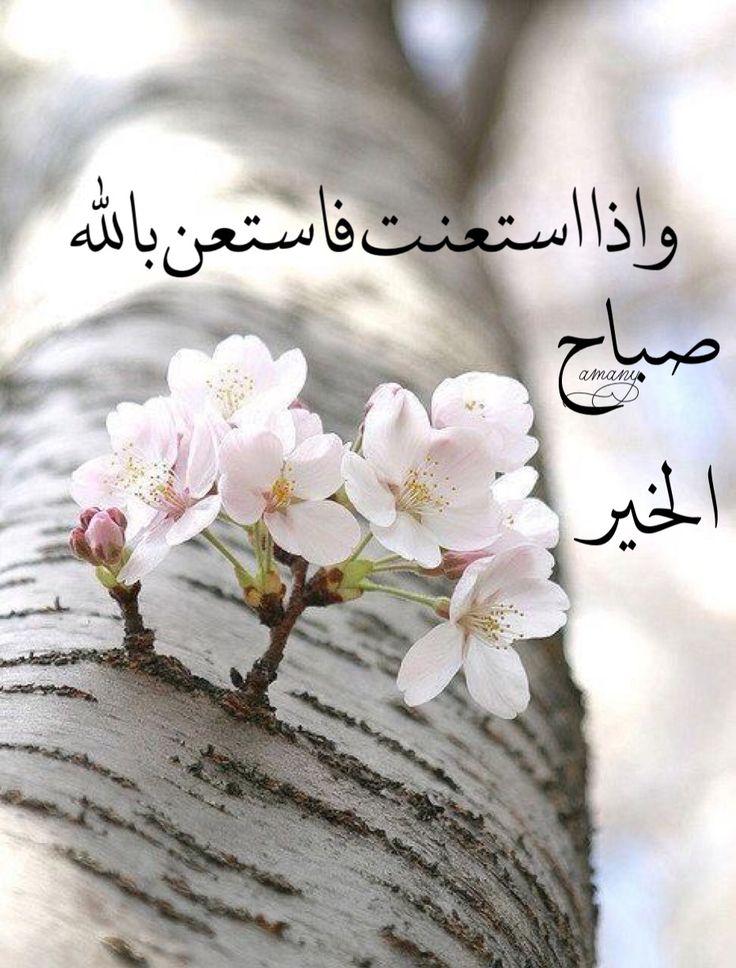 بالصور اجمل كلمات الصباح , رسايل الصباح 3452 2