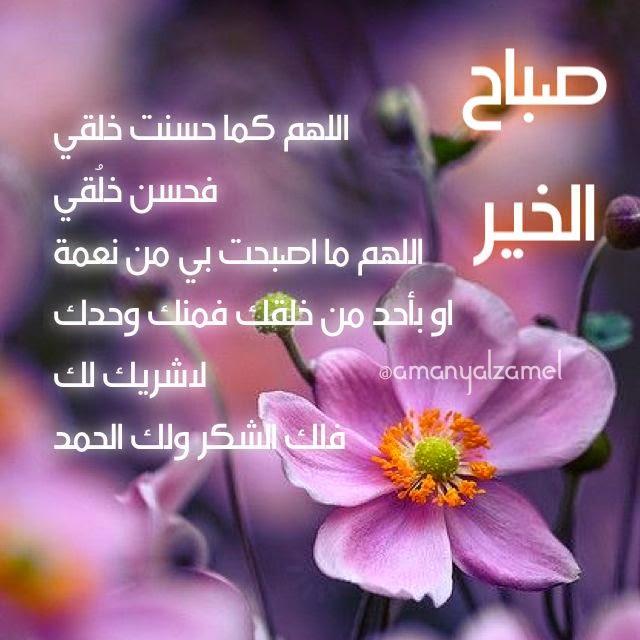بالصور اجمل كلمات الصباح , رسايل الصباح 3452 6
