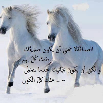 بالصور شعر عن الاصدقاء الاوفياء , اجمل اشعار عن الصديق الوفي 4298 4