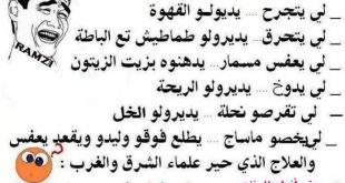 صوره الضحك في الجزائر , اجمل المقاطع الفكاهيه من الجزائر
