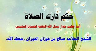 صوره حكم تارك الصلاة , للشيخ محمد الشعراوي