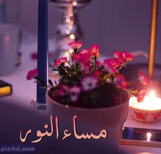 صورة مساء النور , مساء النور والهنا وردة