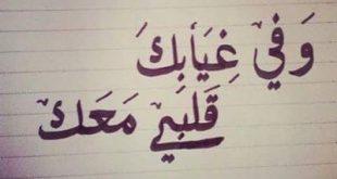 قلبي معك , كلمات اغنية قلبي معك