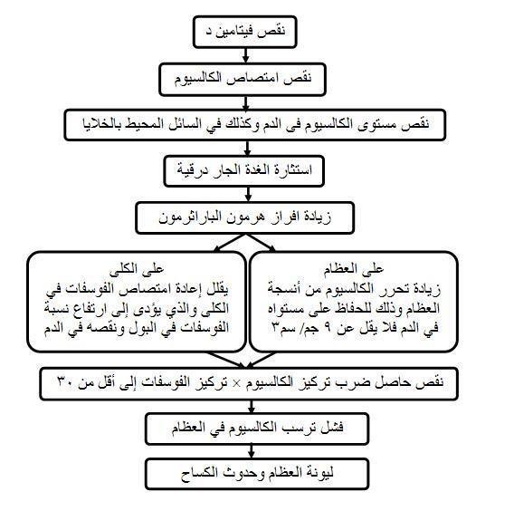 صورة اعراض نقص فيتامين د عند النساء , تاثر النساء بنقص فيتامين د