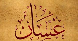 معنى اسم غسان , المعاني المختلفة لاسم غسان