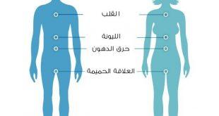 صور جسم الرجل و المراه , الفرق بين جسم الرجل و جسم المراه
