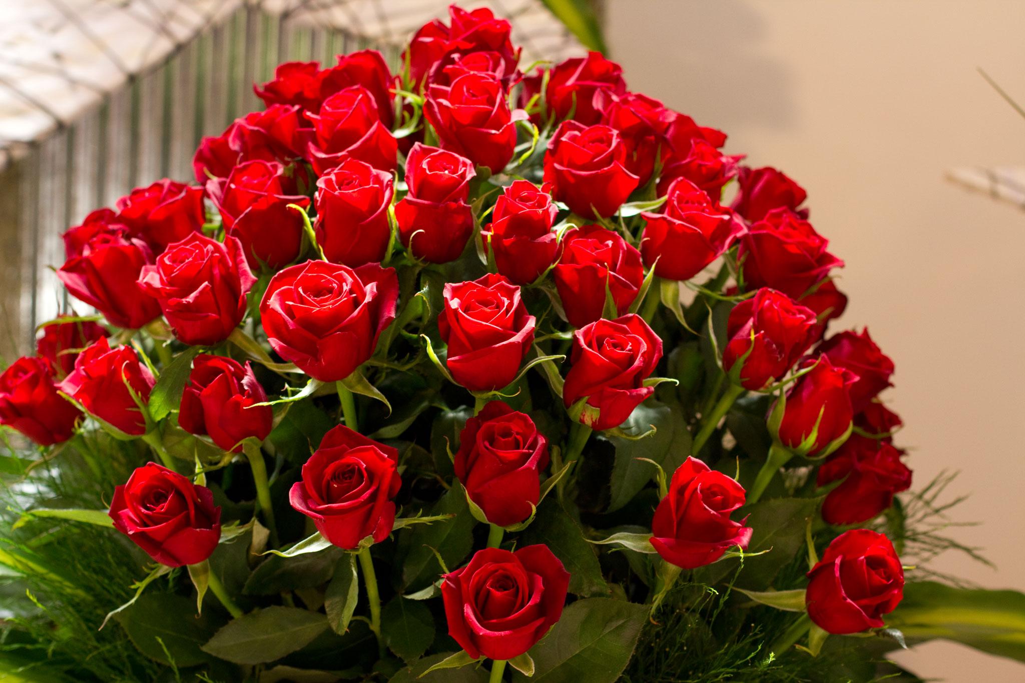 بالصور صور ورد طبيعي , اجمل الورود الطبيعيه باشكالها المختلفه 1054 5