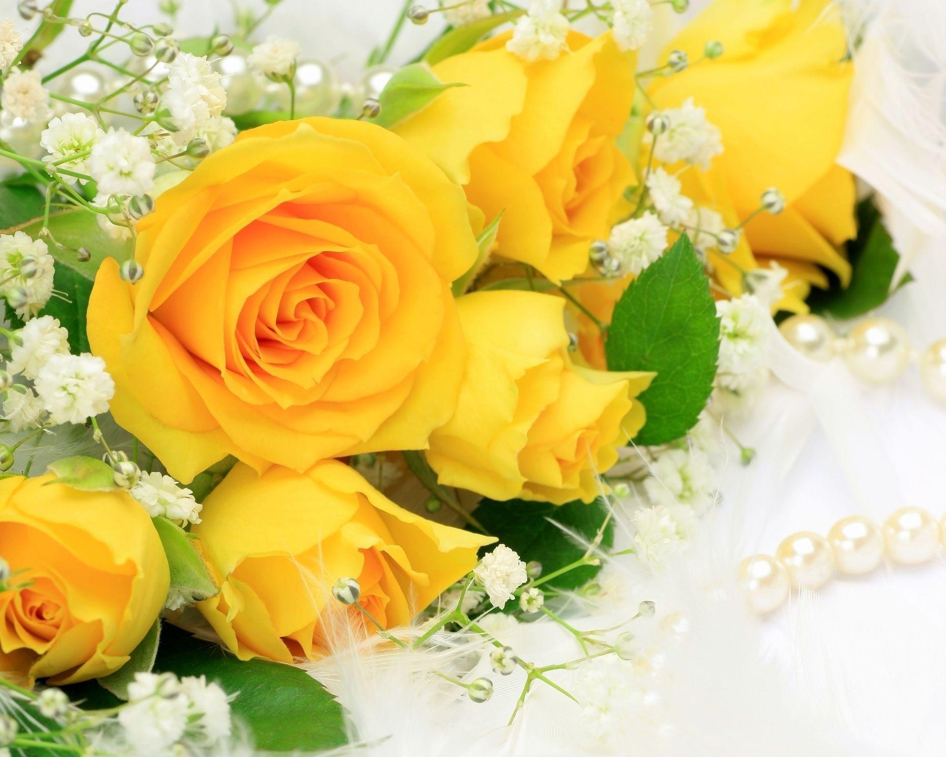 بالصور صور ورد طبيعي , اجمل الورود الطبيعيه باشكالها المختلفه 1054 7