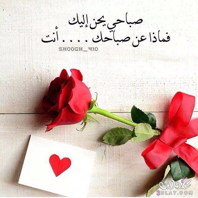 بالصور صباح الحب حبيبتي , اجمل الكلمات البسيطه للحبيبه في الصباح 1070 7