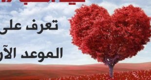 صور متى عيد الحب , ما هو عيد الحب و موعده