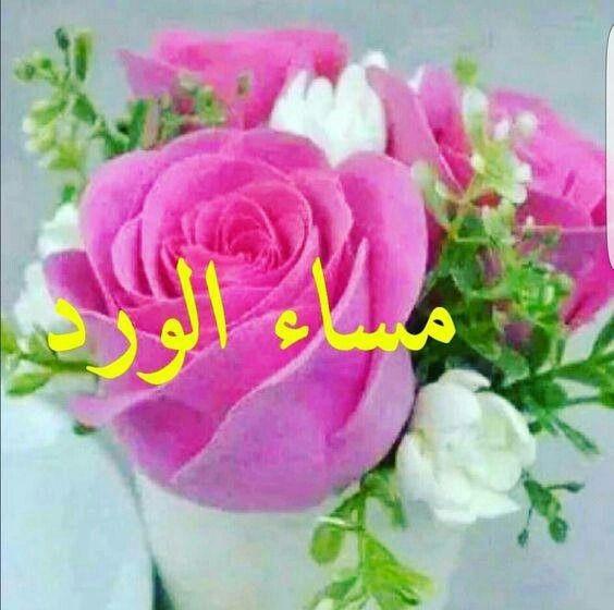 صورة ورود مكتوب عليها عبارات جميله , اجمل اشكال الزهور والعبارات والكلمات