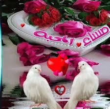 صوره اجمل صور مساء الخير , للاصدقاء والاحباء والمميزين في حياتك