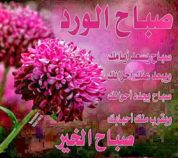 بالصور صور صباح الخير للحبيب , الغالي العزيز والوفي 2021 10