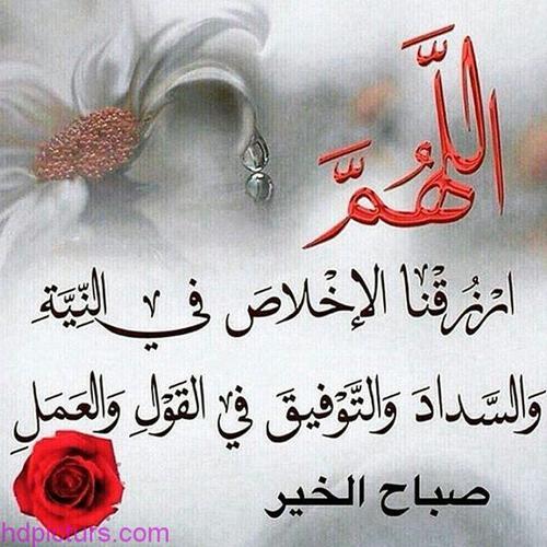 بالصور صور صباح الخير للحبيب , الغالي العزيز والوفي 2021 8