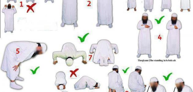 بالصور طريقة الصلاة الصحيحة بالصور , علم ابنائك واهلك واحبابك الطريقة الصحيحة لصلاة 2030 3