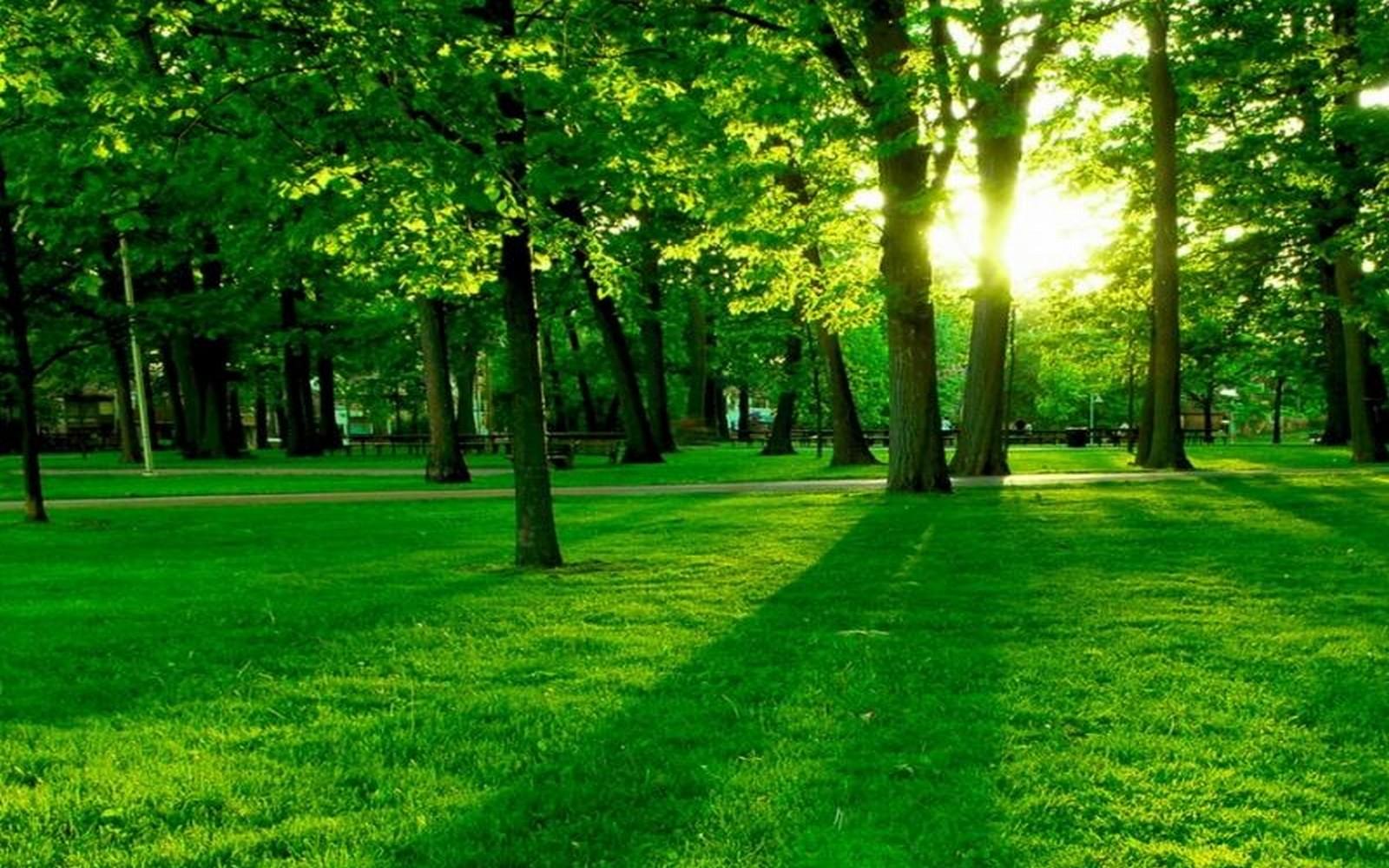 بالصور اجمل صور الطبيعة , المميزة الخلابة 2176 11