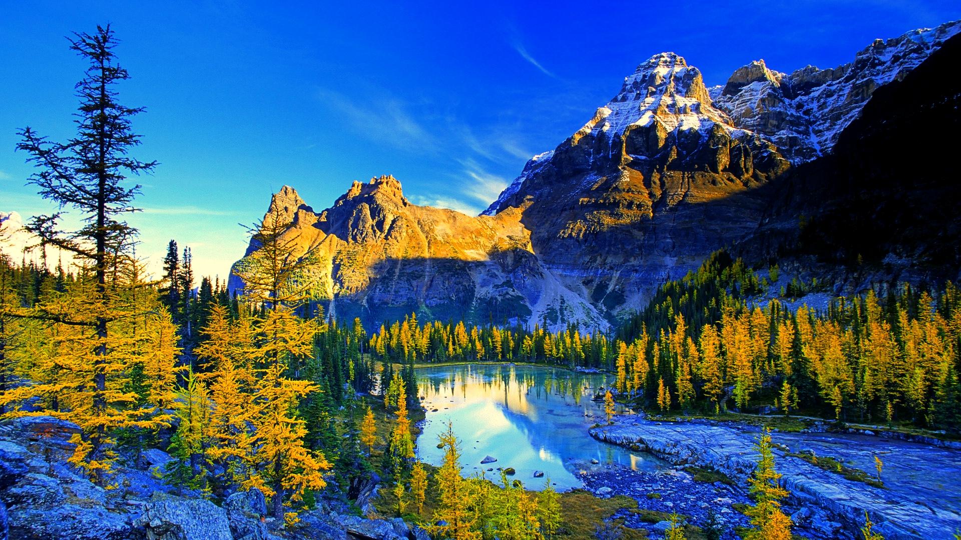 بالصور اجمل صور الطبيعة , المميزة الخلابة 2176 7