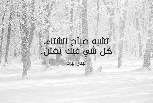 صوره صباح الرومانسية , احلي صباح بين المطر ورياح الحب