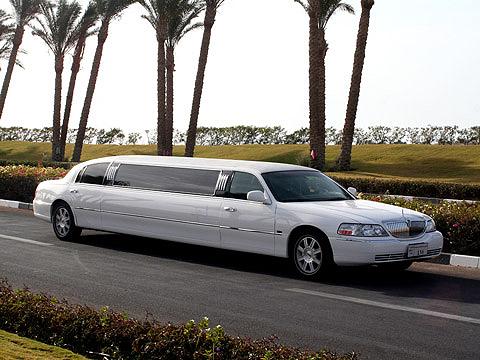 بالصور اكبر سيارة في العالم , صور اكبر سيارات العالم 4030 9