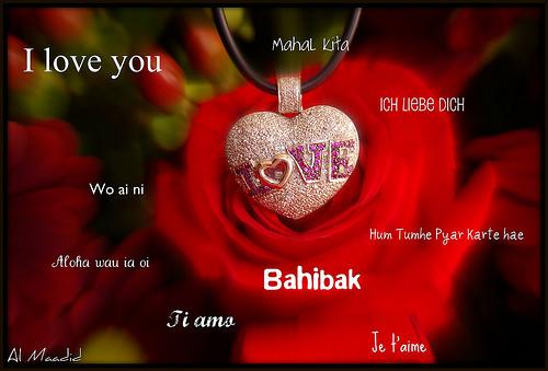 بالصور كلمة بحبك , صور بحبك بكل اللغات 4182 5
