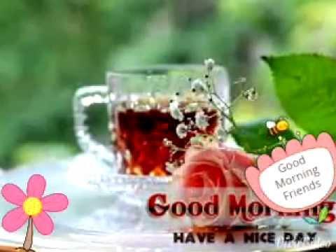 بالصور رسائل صباح الخير , صور صباح الخير للواتس اب 4197 1