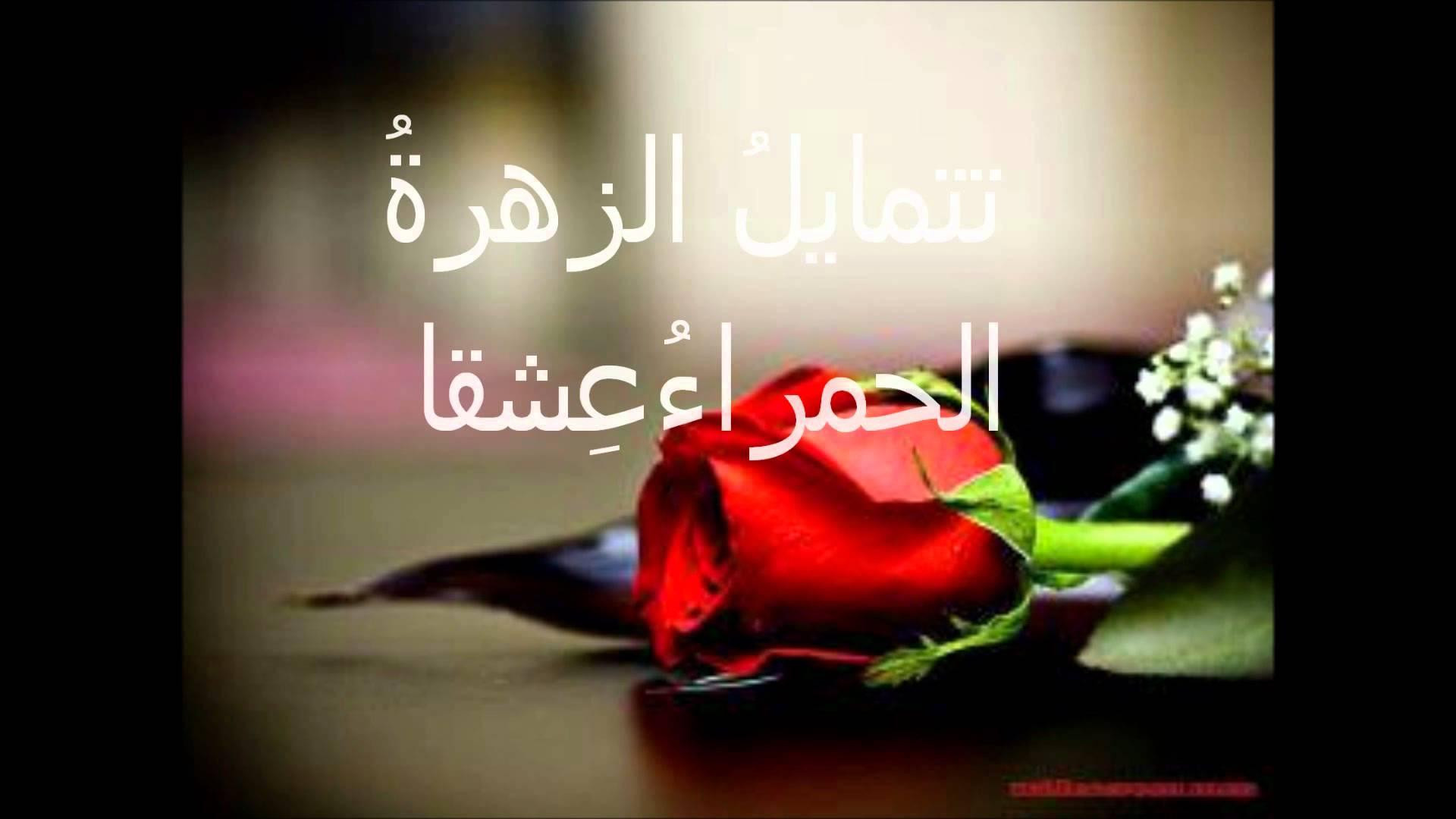 نتيجة بحث الصور عن كلمات عن الورد