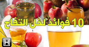 فوائد خل التفاح , تعرف على كيفية الاستفادة من خل التفاح