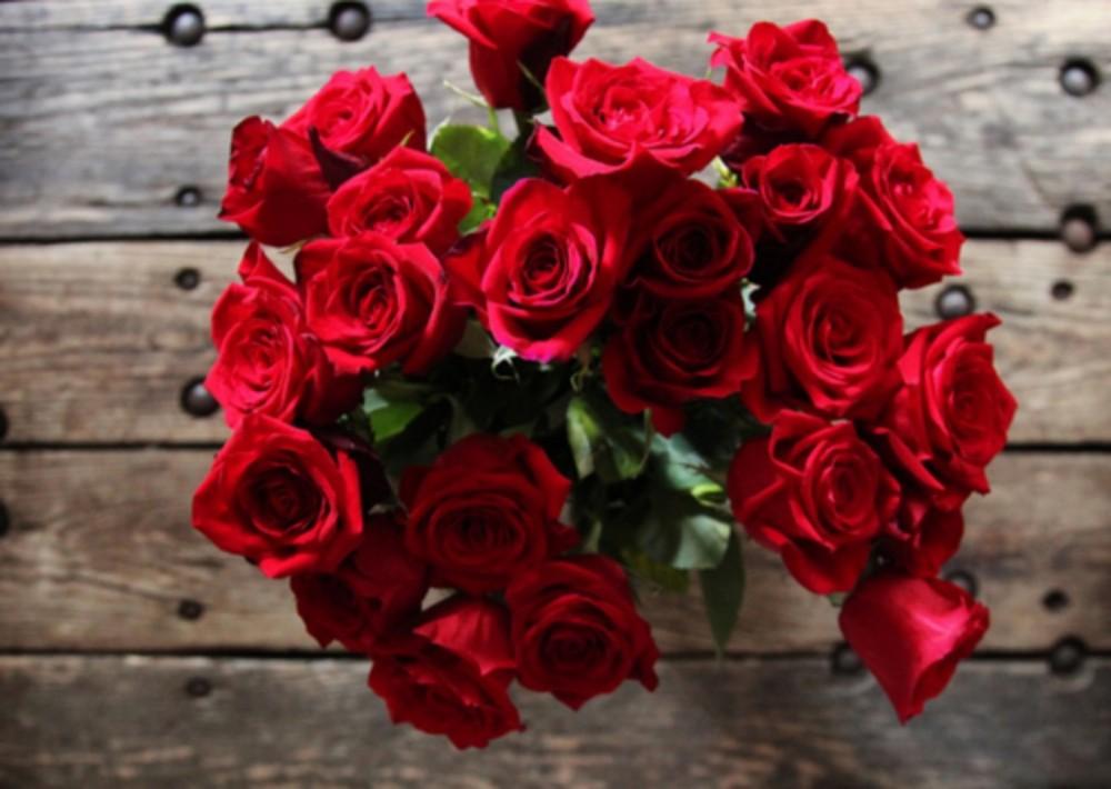 بالصور اجمل ورود الحب , اروع دليل لاثبات حبك للحبيب 6418 1