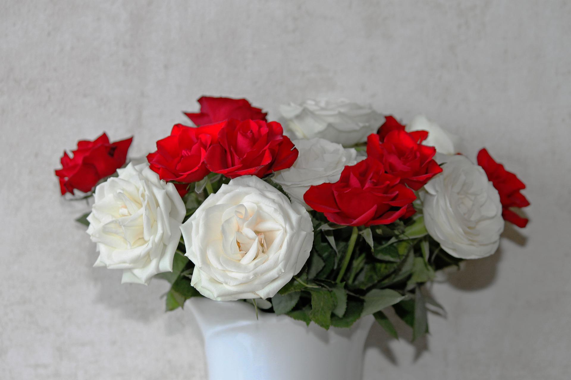 بالصور اجمل ورود الحب , اروع دليل لاثبات حبك للحبيب 6418 2