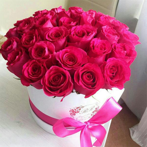 بالصور اجمل ورود الحب , اروع دليل لاثبات حبك للحبيب 6418 5