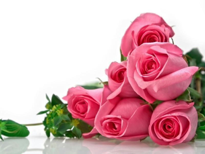 بالصور اجمل ورود الحب , اروع دليل لاثبات حبك للحبيب 6418 8