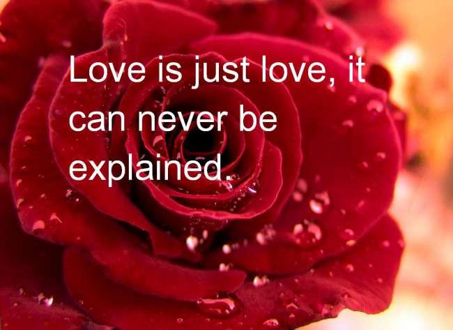 بالصور صور لحب , مشاعر رومانتيكية ولا اروع 6498 6