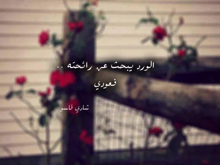 بالصور كلمات عن الورد , عبارات تفوح بالعطور 6561 3