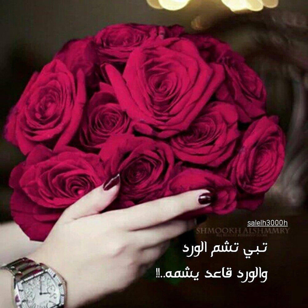 بالصور كلمات عن الورد , عبارات تفوح بالعطور 6561 8