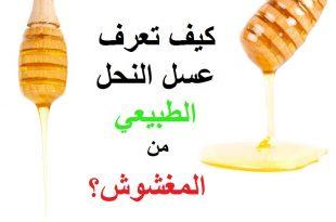 بالصور كيف تعرف العسل الاصلي , تعرف على كيفيه معرفه العسل الطبيعي 6597 3 310x205