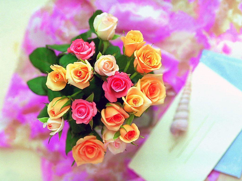 بالصور ورود جميلة , اجمل الورود و الذهور الرائعه 765 11