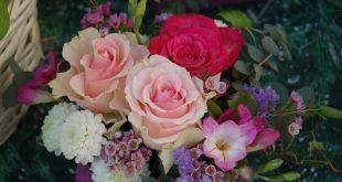 صوره ورود جميلة , اجمل الورود و الذهور الرائعه