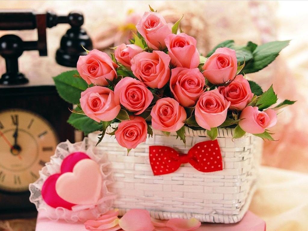 بالصور ورود جميلة , اجمل الورود و الذهور الرائعه 765 2