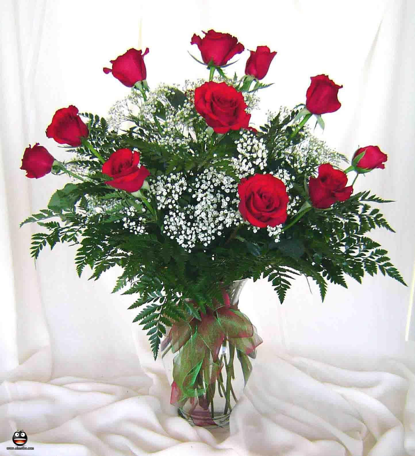بالصور ورود جميلة , اجمل الورود و الذهور الرائعه 765 9