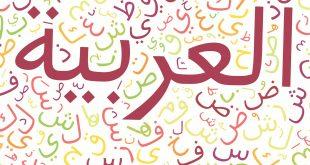 بالصور معلومات عن اللغه العربيه , حقائق و معلومات حول اللغه العربيه 774 3 310x165