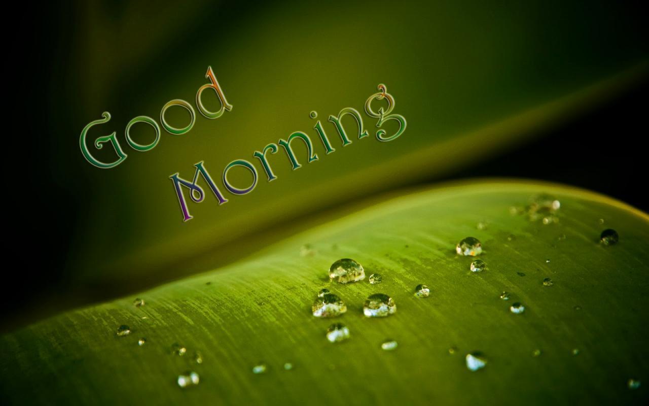 بالصور صور عن صباح الخير , لافتات جميله تحمل عبارة صباح الخير 795 11