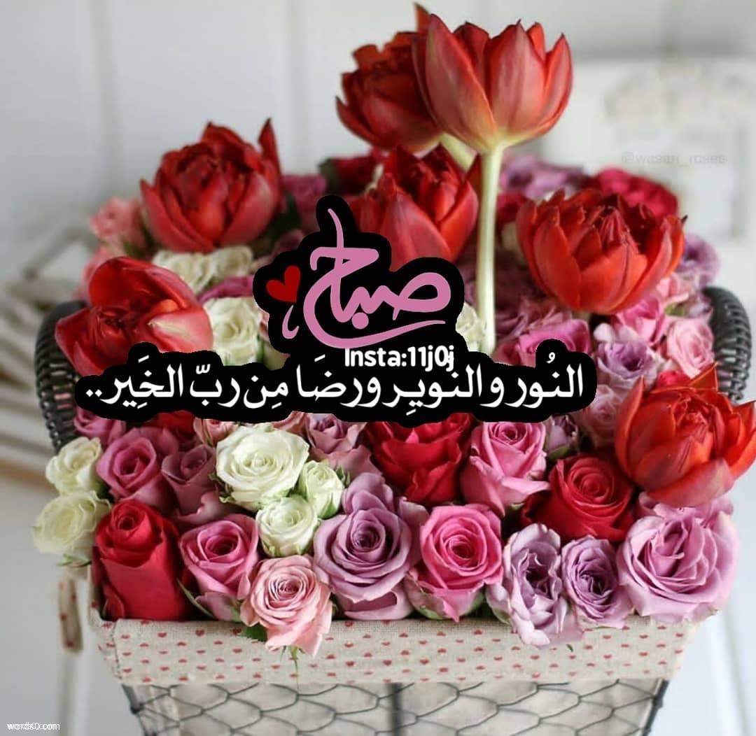 بالصور صور عن صباح الخير , لافتات جميله تحمل عبارة صباح الخير 795 8